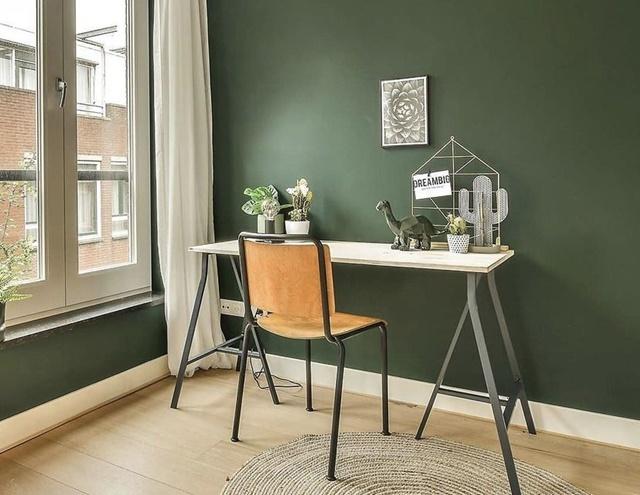 Trendy v bydlení - jaké barvy stěn jsou in