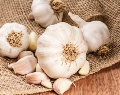 Česnek a jeho moc léčit aneb jak zatočit s viry