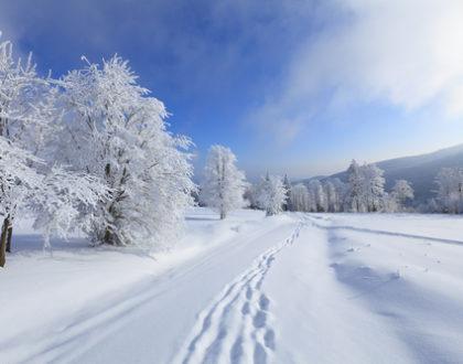 Co v zimě škodí zdraví