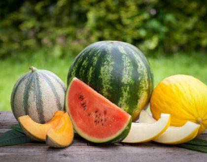 Melounová dieta - znáte její účinky?