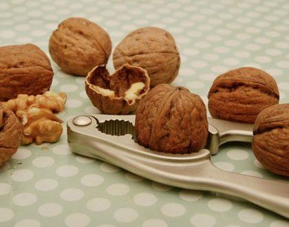 Jak zpracovat vlašské ořechy